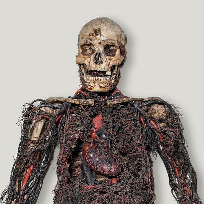 Macchine anatomiche nella Cappella Sansevero a Napoli