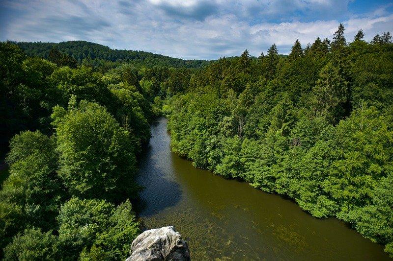 Selva foresta teotoburgo
